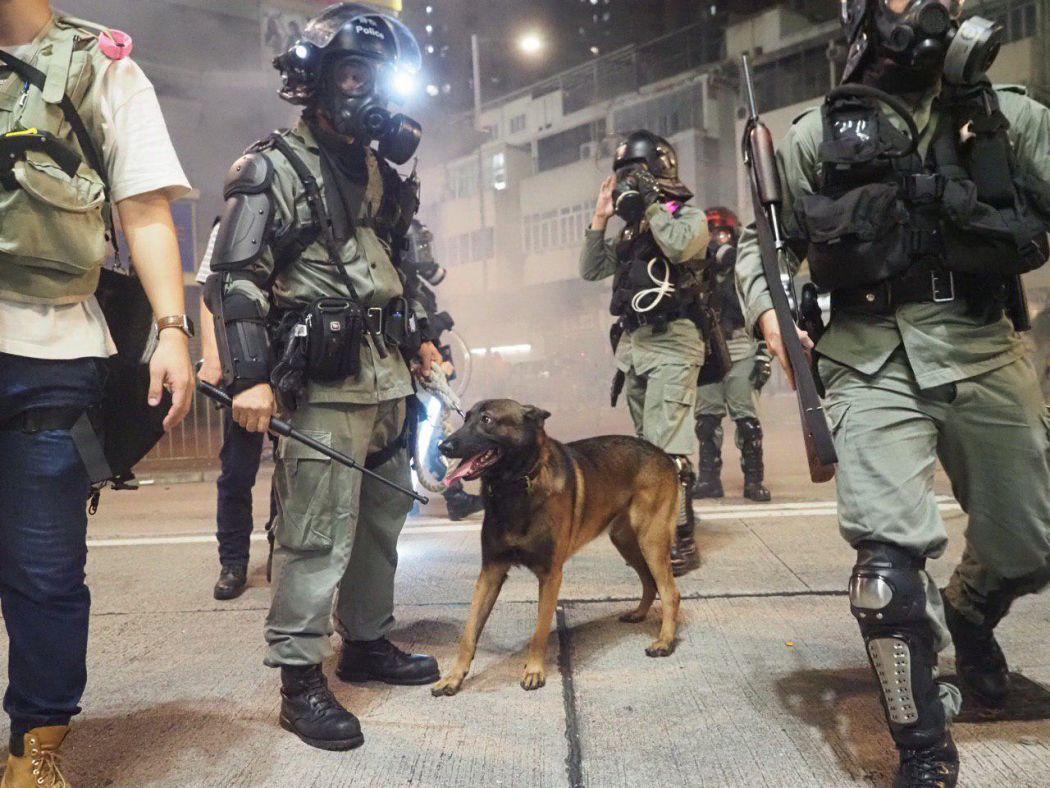 anjing polisi yuen tanggal 21 Oktober