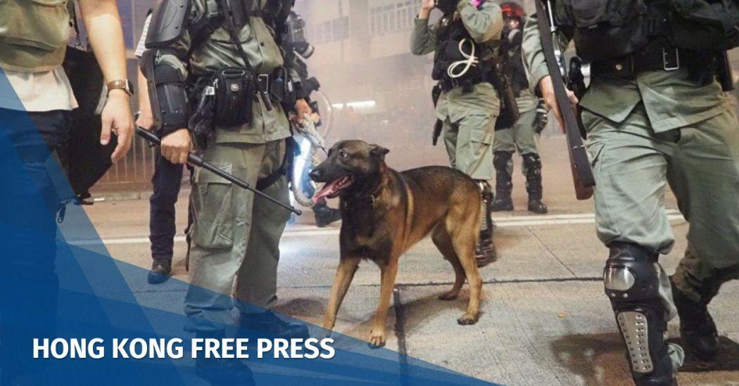 police dog yuen long