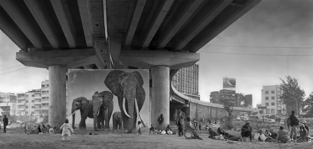 Underpass with Elephants Nick Brandt