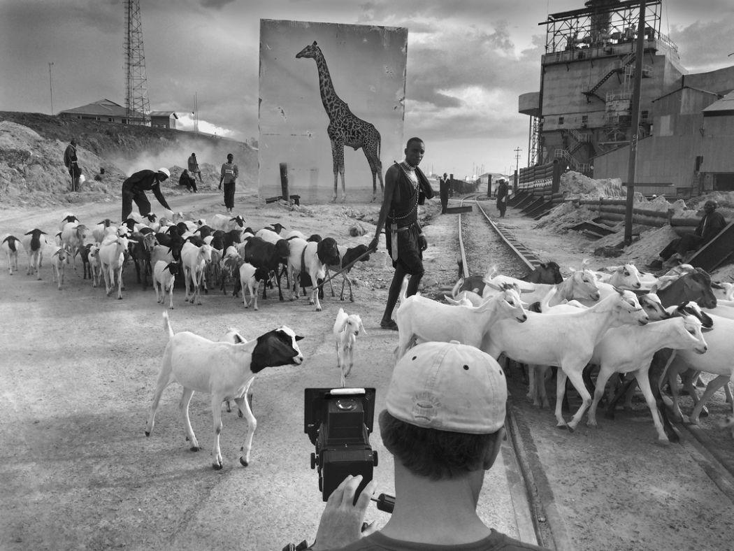 Nick Brandt Giraffe Joshua Yeh