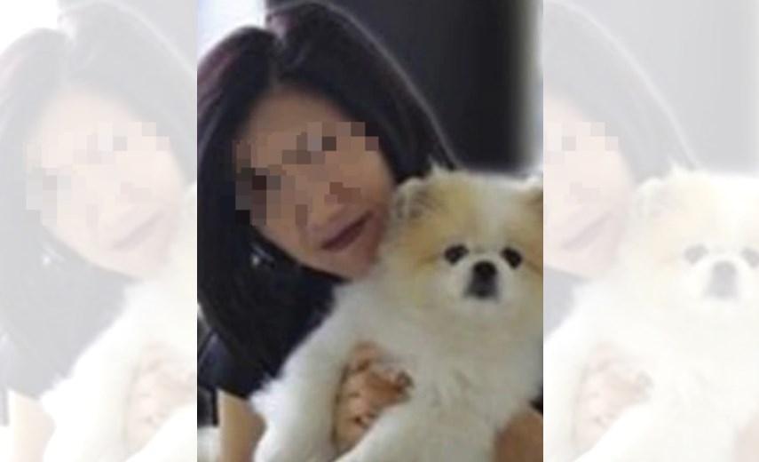 pet dog infected virus