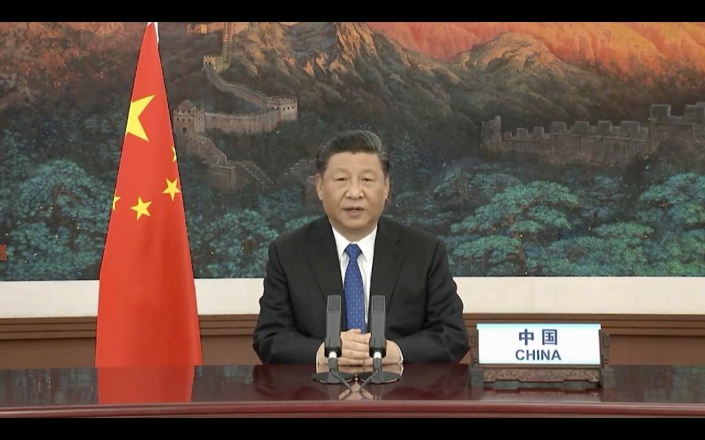 Xi Jinping WHO