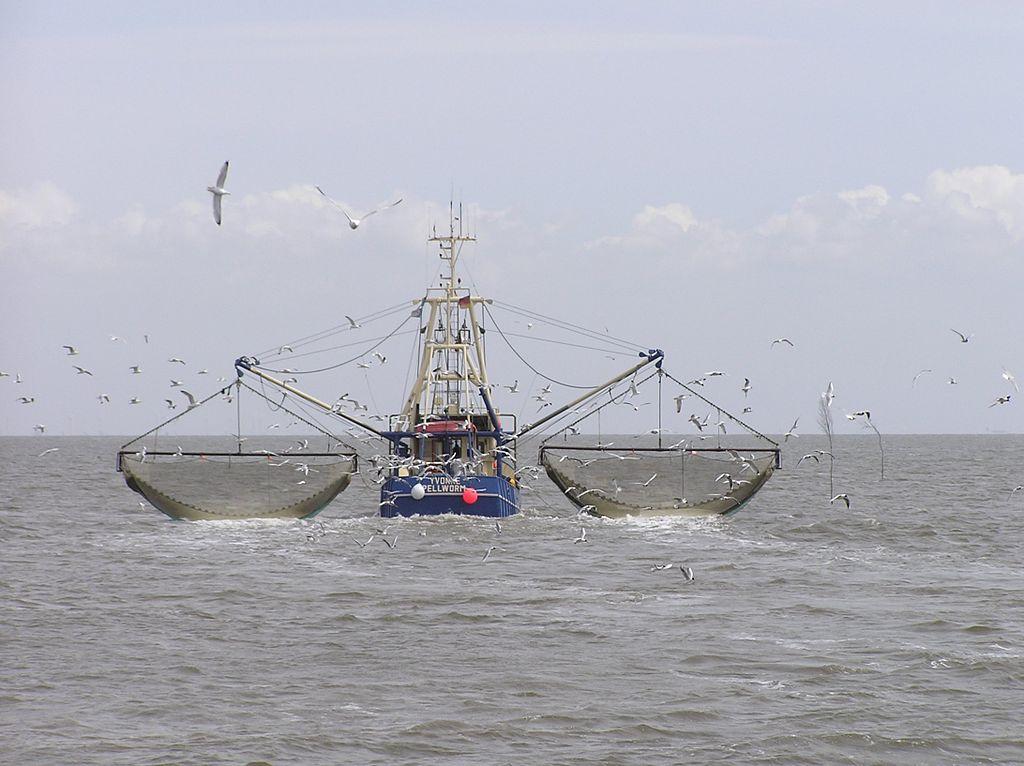 fishing vessels boat sea
