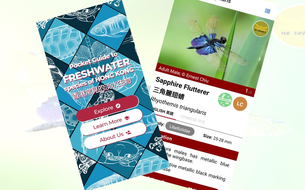Freshwater Collective app