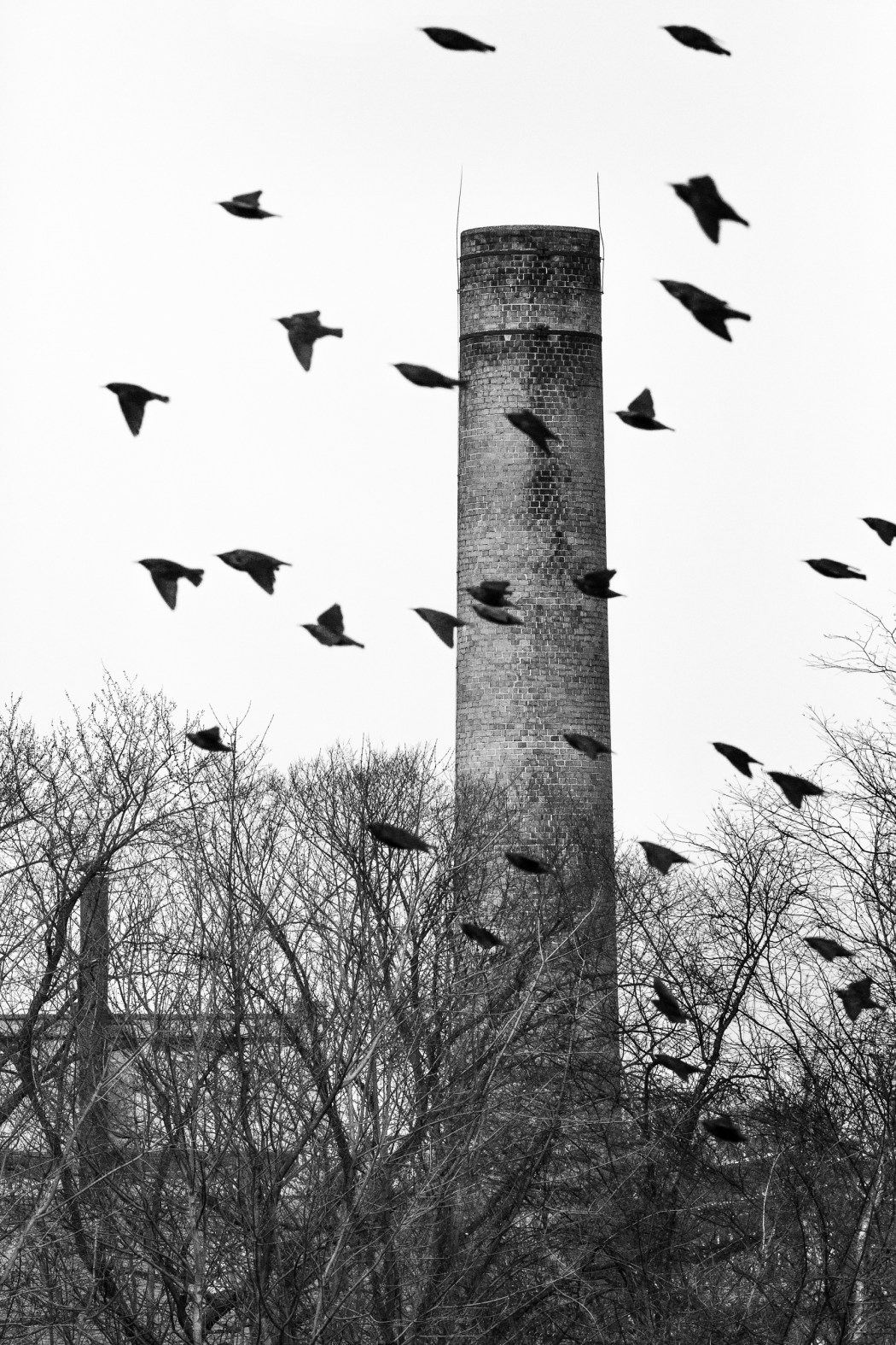 Smokestack on the Passaic River