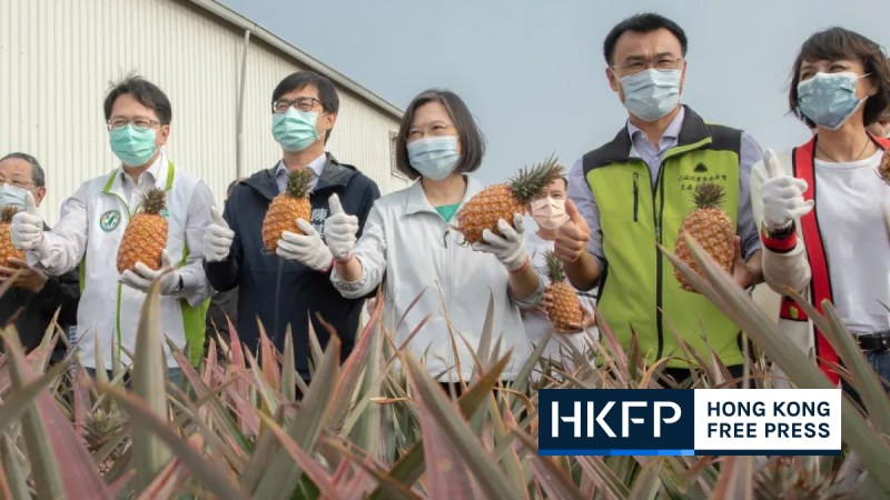 Tsai ing-wen showing support to local pineapple farmers feature img