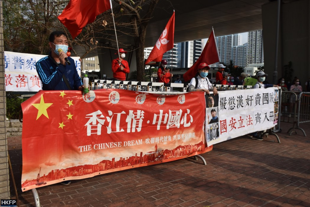 Pro-Beijing protesters
