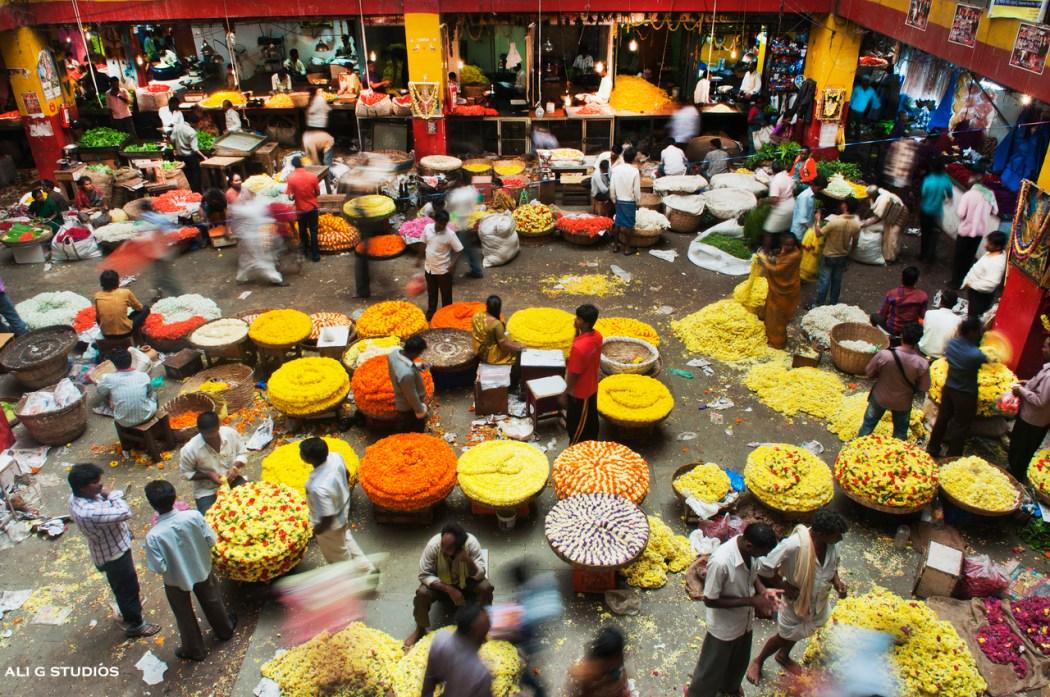 Ali G Studios Bangalore flower market