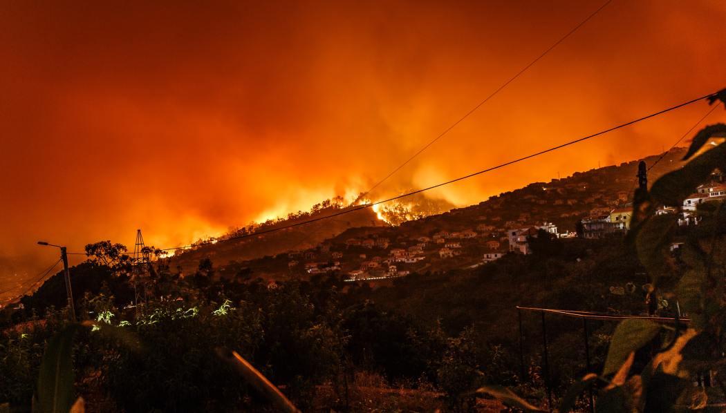 wild fire file photo