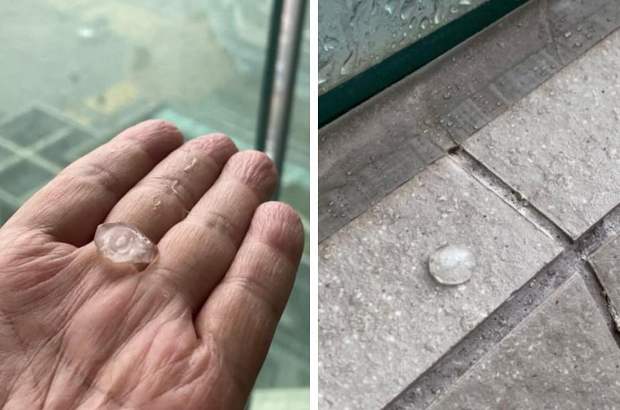 hail hong kong