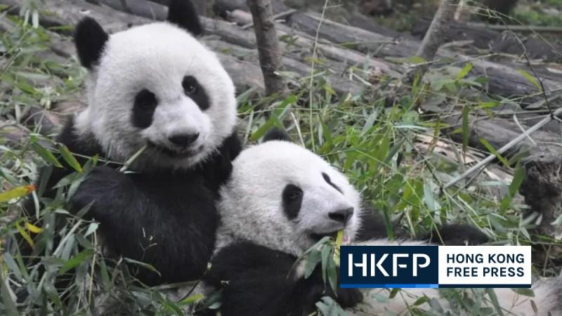 china injects billions into biodiversity